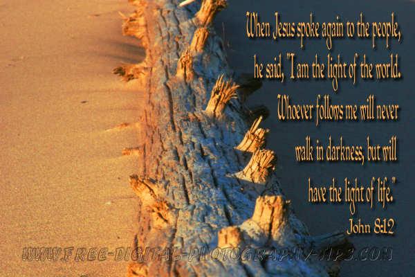 beach sand sunset log michigan motivational spiritual inspirational photography