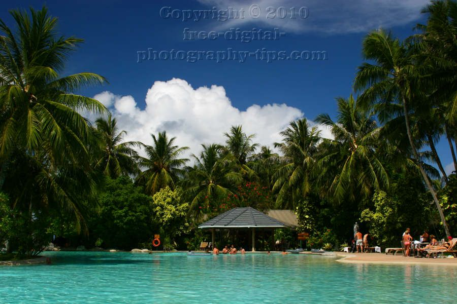 sun island maldives pool palm trees white fluffy clouds