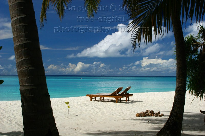 honeymoon maldives white sandy beach sand sun island sand chair palm trees
