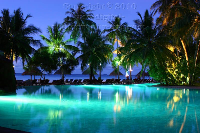 sun island maldives night photography pool palm trees