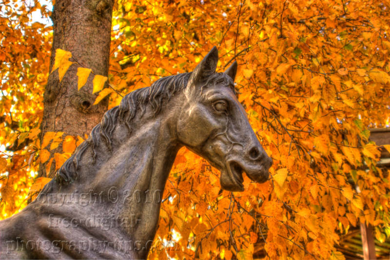 HDR photography swiss horse statue colorful fall foliage Ebikon Switzerland