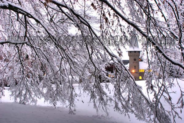 Luzern Switzerland Photography Music Castle Thru The Snowy Trees